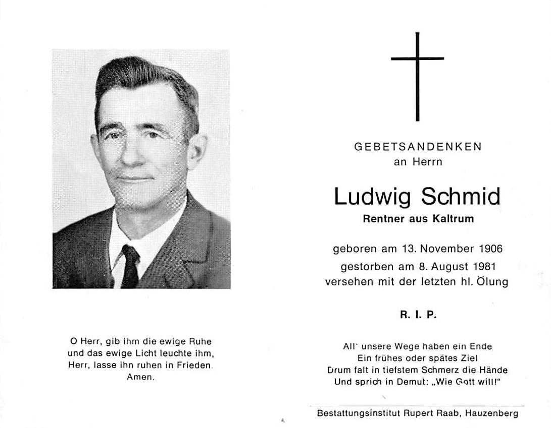 1981-08-08-Schmid-Ludwig-Kaltrum