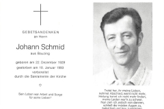 1993-01-18-Schmid-Johann-Bauzing