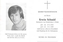 1994-01-15-Schmid-Erwin-Neukirchenv.Wald-Steinmetz