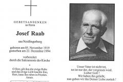 1994-12-22-Raab-Josef-Neidlingerberg