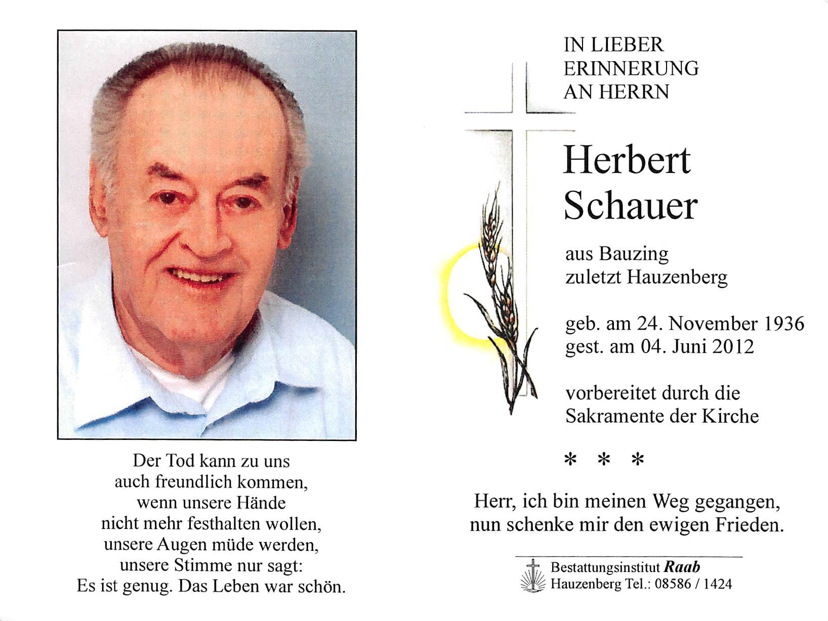 2012-06-04-Schauer-Herbert-Bauzing-Steinhauer-Harry