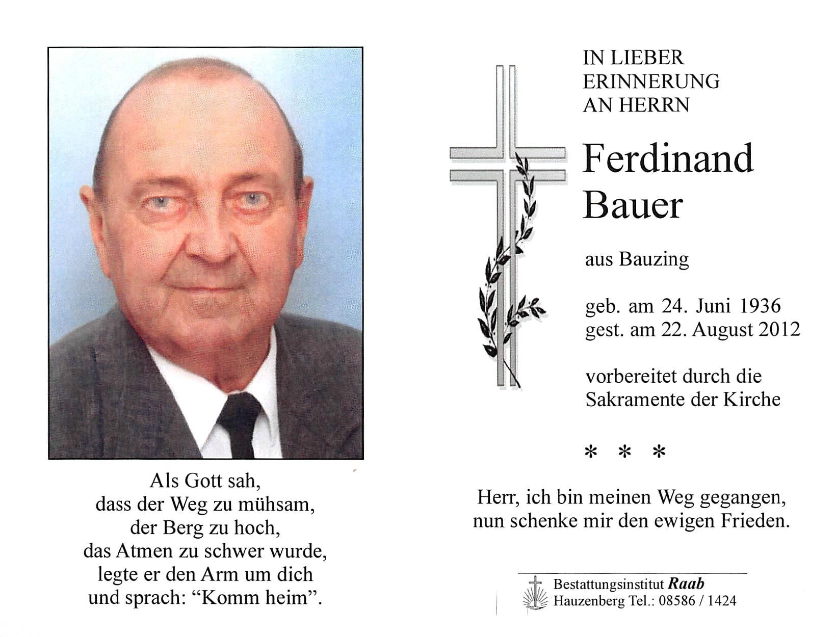 2012-08-22-Bauer-Ferdinand-Bauzing