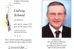 2014-01-08-Schmid-Ludwig-Kaltrum