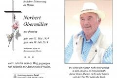 2014-07-30-Obermüller-Norbert-Bauzing-Steinhauer