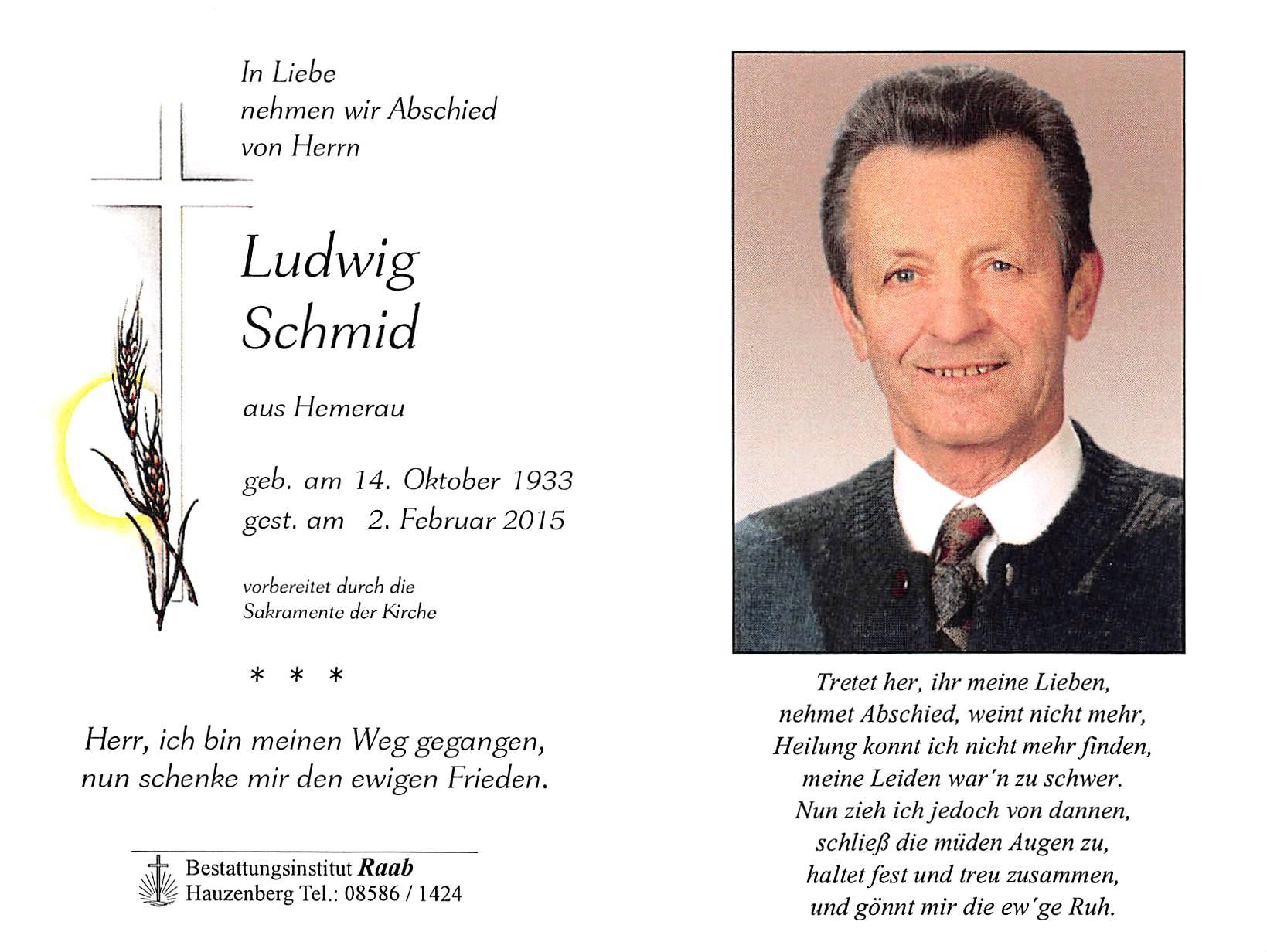 2015-02-02-Schmid-Ludwig-Hemerau-Zillewigg