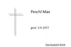 1977-09-03-Peschl-Max