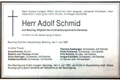 1987-07-01-Schmid-Adolf-Bauzing-Steinhauer
