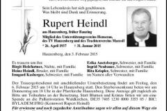 2015-01-31-Heindl-Rupert-Hauzenberg-Bauzing