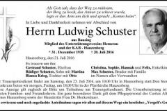 2016-07-20-Schuster-Ludwig-Bauzing